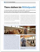 Meat Magazin