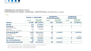 Auswertungen Audits 2019   OGK